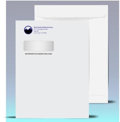 9 x 12 Catalog Window Envelopes, Black + 1 PMS color print, # 21040K1